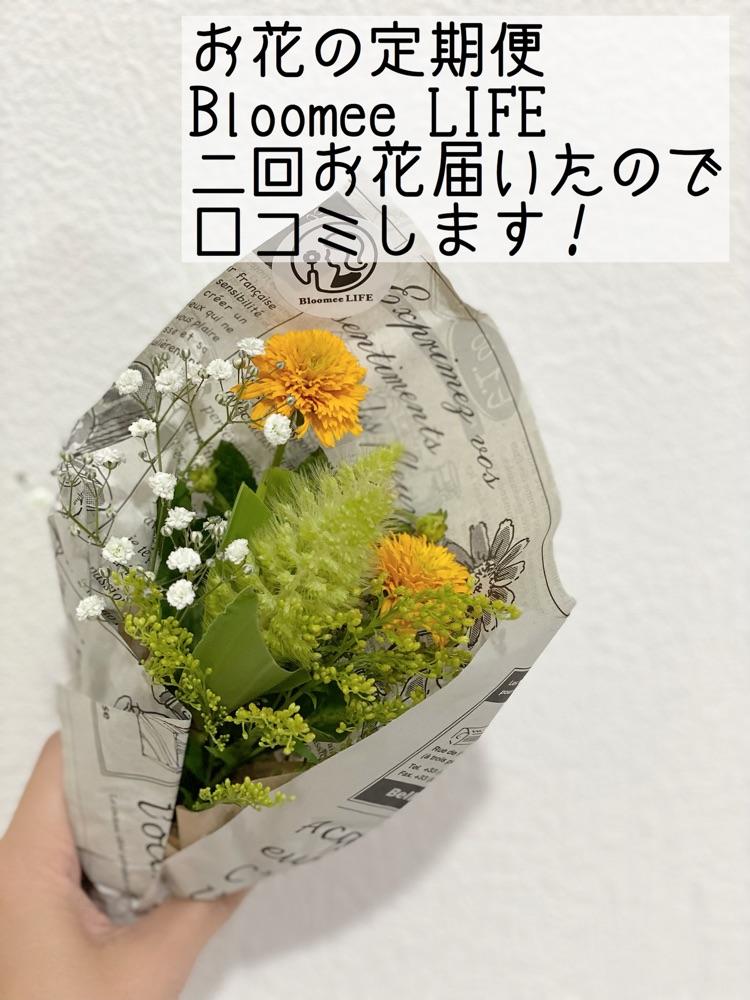 お花の定期便Bloomee LIFE正直に【口コミ】します!