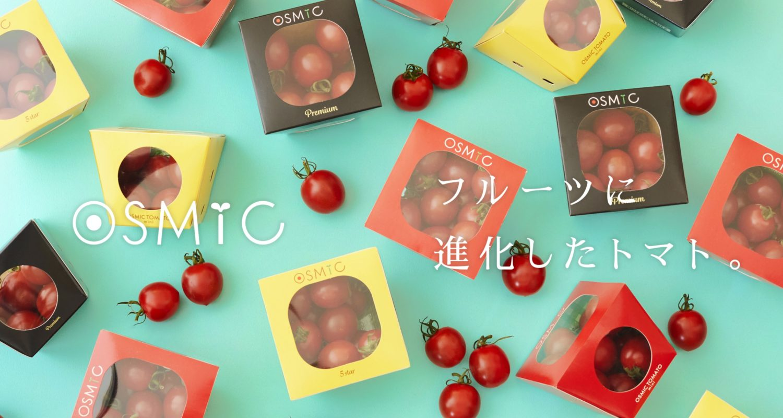 【野菜不足】フルーツ並の糖度のミニトマトオスミックOSMICトマトが凄い!