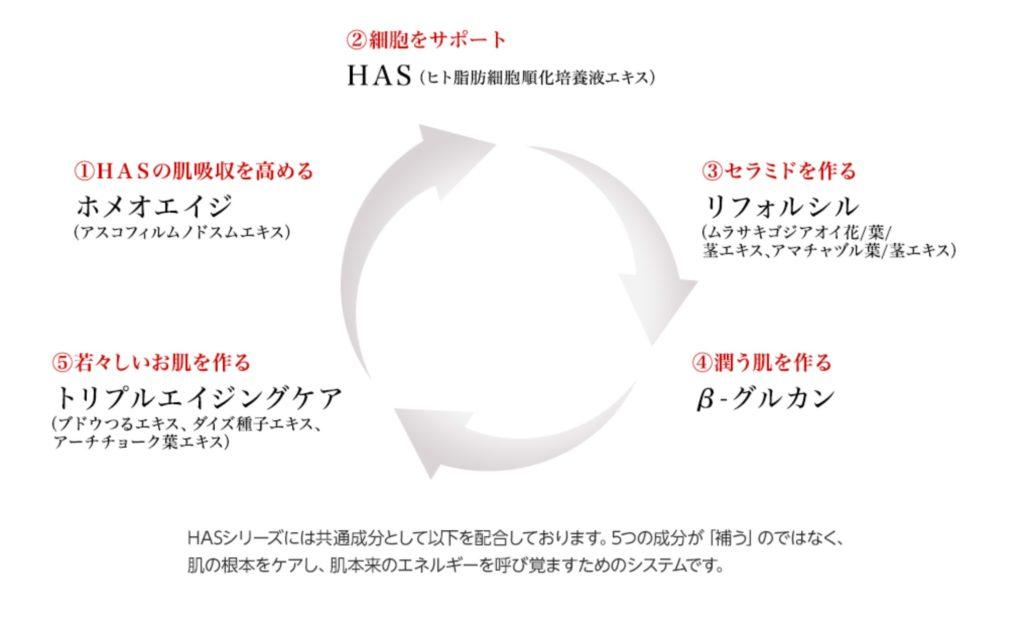 HAS5つの